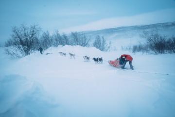 Impressionen Huskyfarm Norwegen-8